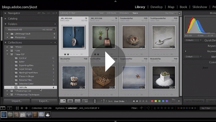 Quick Tip: How to Remove Unwanted Collections When Exporting Catalogs in Lightroom