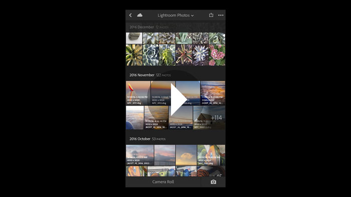 Viewing Options in Lightroom Mobile