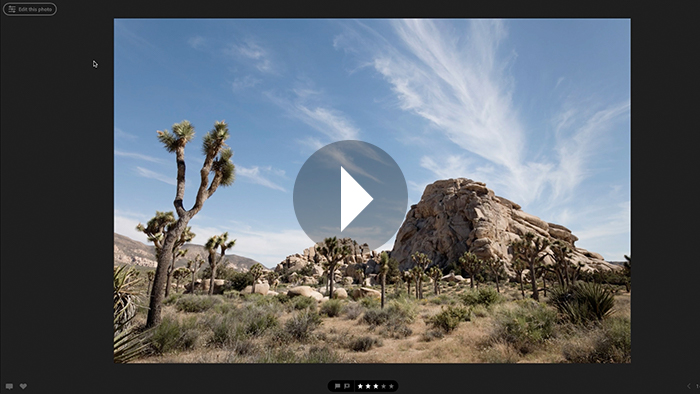 Crop and Straighten Photographs in Lightroom Web