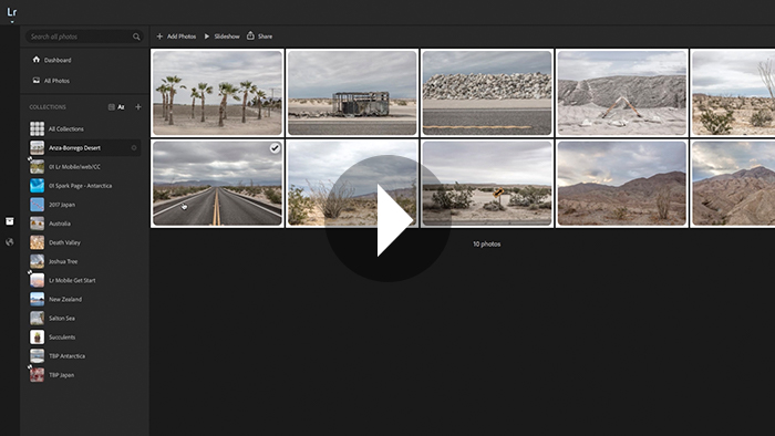 Organizing Photographs Using Collections in Lightroom Web