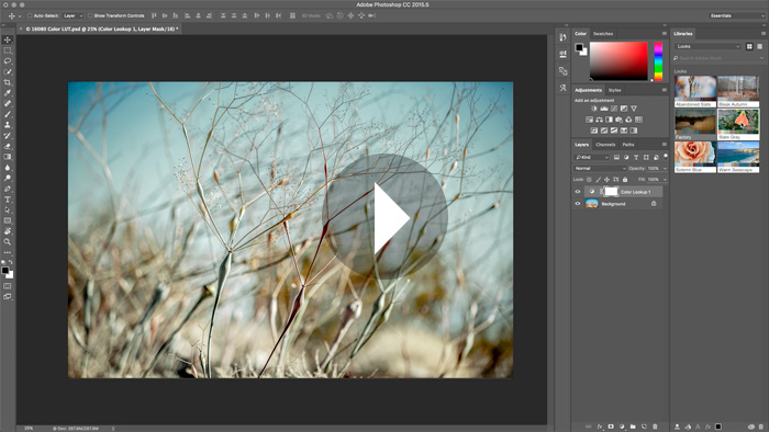 5 Hidden Gems in Photoshop CC