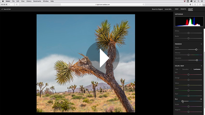 Lightroom Tutorials by Julieanne Kost